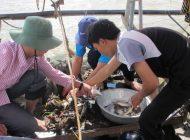 Vietnam fish survey