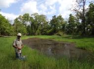 Sampling Vietnam wetland