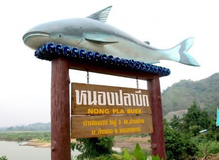 Mekong Catfish Sign