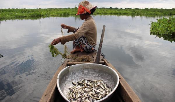 IUCN Mekong WET